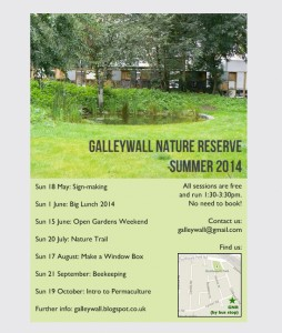 Galleywall: publicity flyer